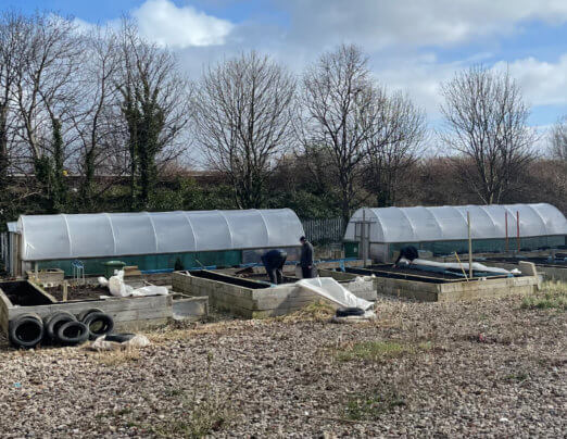 Help needed for our community garden