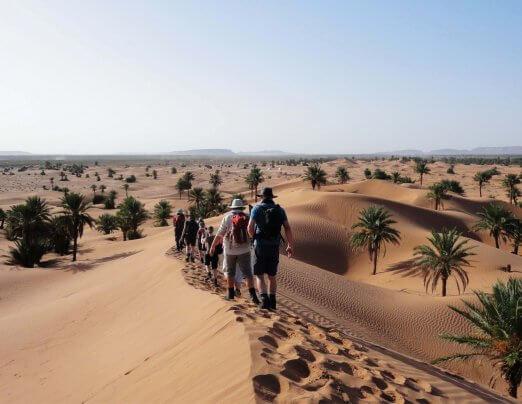 Sahara Challenge 2020 – information evening