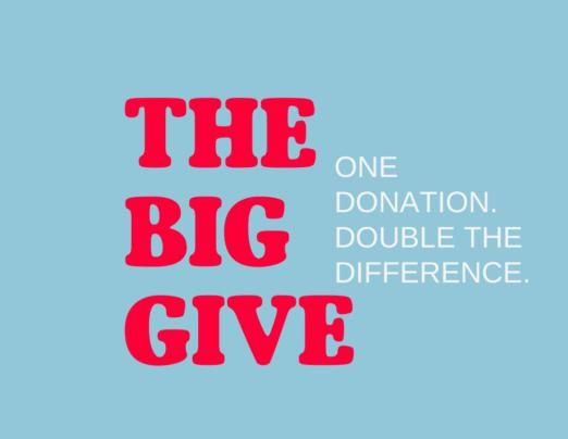 Big Give Christmas Challenge 2020