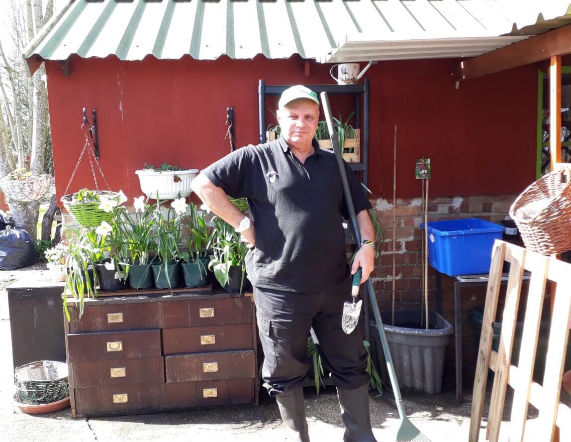 David's garden update